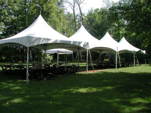 Where to find CANOPY, 20  x 80  FRAME              20T in Butler