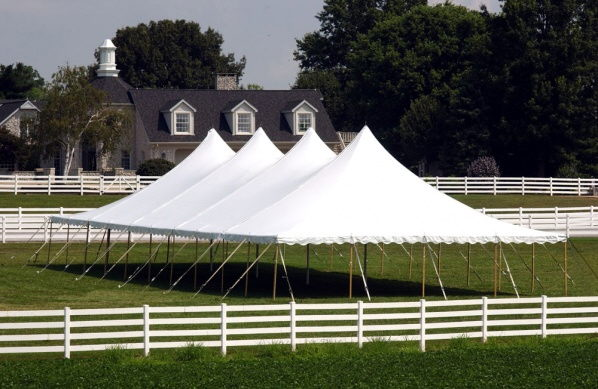 Where to find CANOPY, 40  x 40  POLE, WHITE HIGH PEAK in Butler